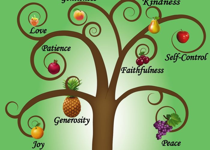 Truth Facts Fruits of the Spirit