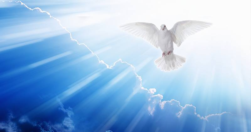 Holy Spirit Descending as A Dove IHaveHeard.Com